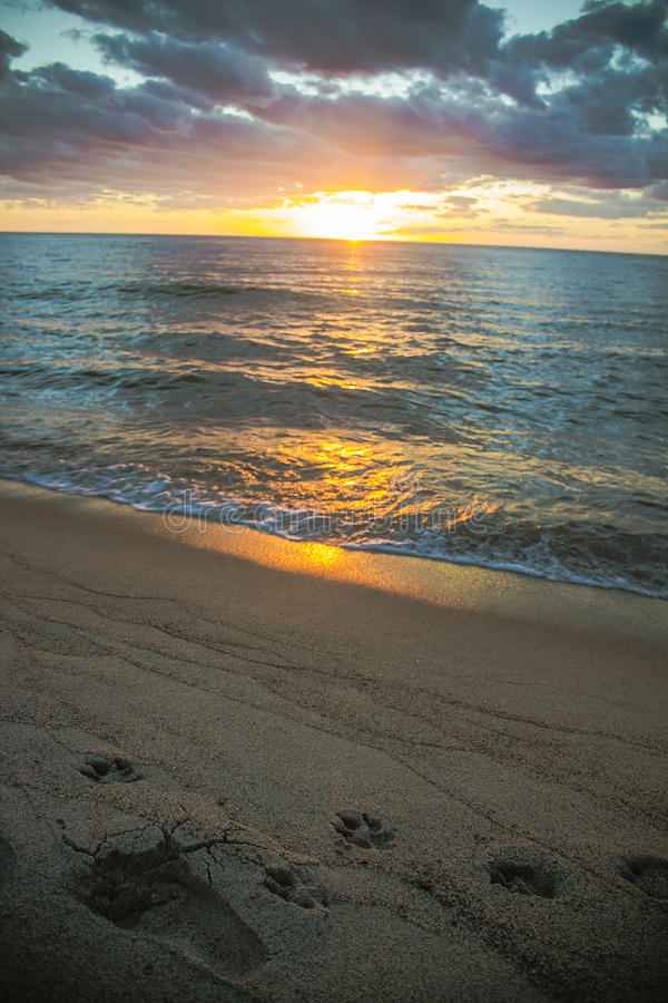 Заход солнца с следами ноги на пляже стоковые фотографии rf