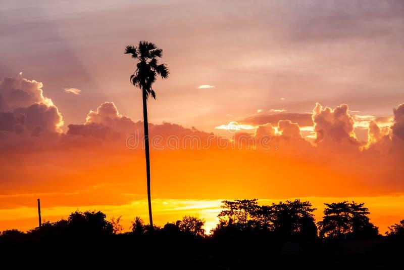 Заход солнца с фермой стоковое изображение