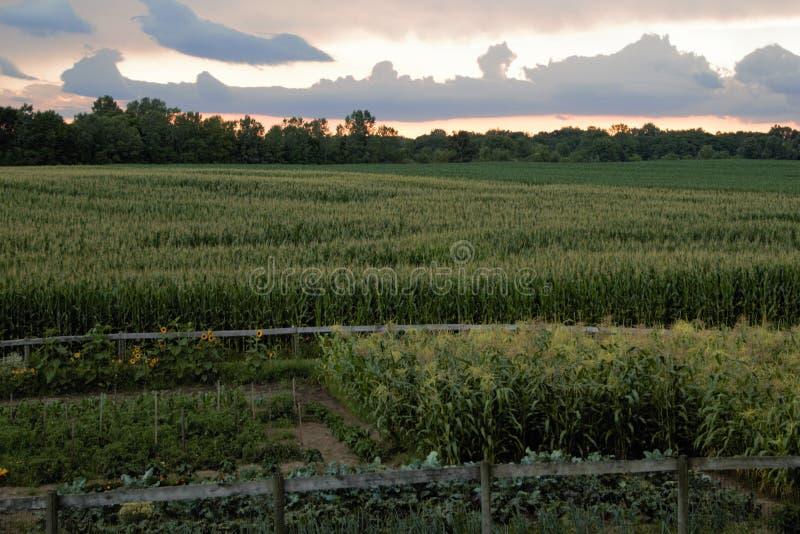 Заход солнца фермы стоковое фото rf
