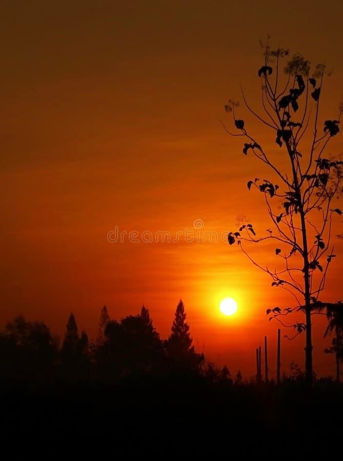Download Заход солнца стоковое изображение. изображение насчитывающей daylight - 37929809