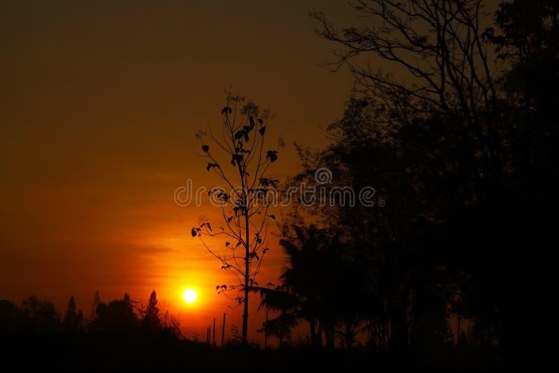 Download Заход солнца стоковое фото. изображение насчитывающей ноча - 37929938
