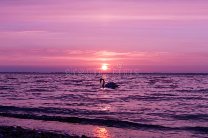 Заход солнца baltic 14 стоковая фотография
