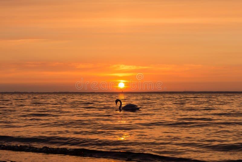 Заход солнца baltic 11 стоковые изображения