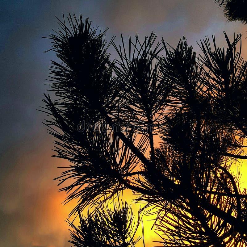 Заход солнца Firey стоковое фото