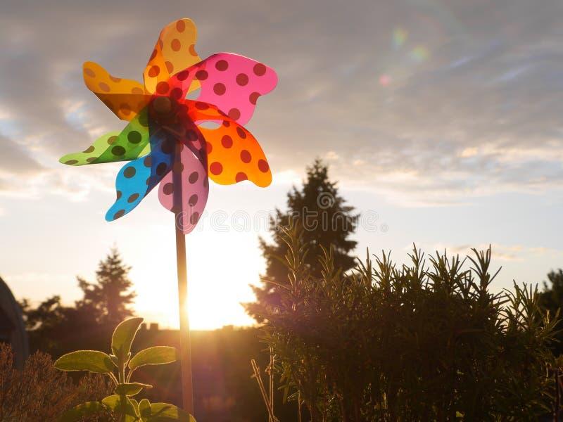 Заход солнца Pinwheel outdoors стоковое изображение