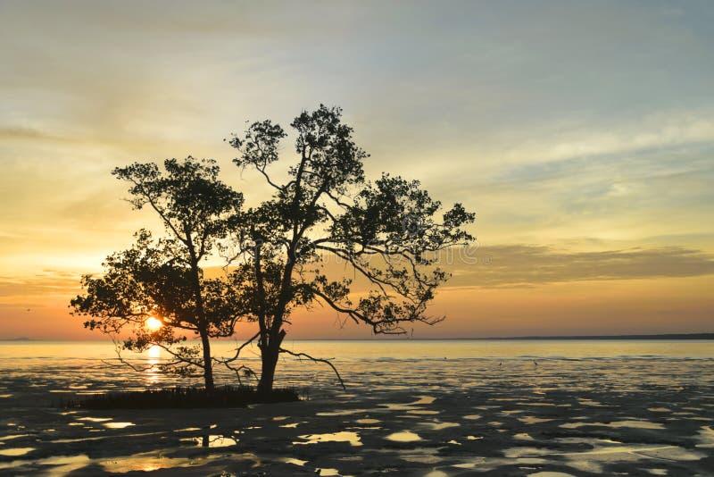 Заход солнца Tropica на накидке стоковое фото