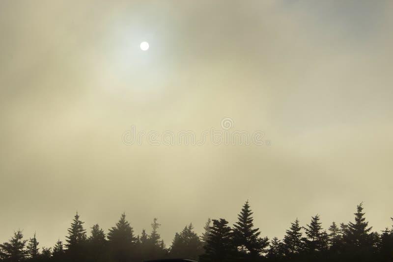 Заходящее солнце за туманом стоковое фото rf