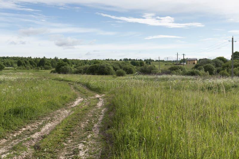 Зацветая луг, проселочная дорога, молодые зеленые деревья, загородный дом, стоковое фото