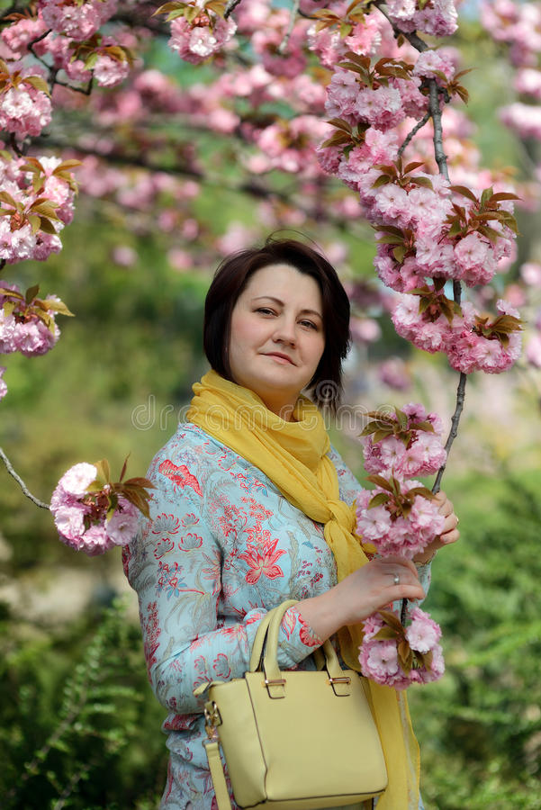 Зацветая сад стоковая фотография
