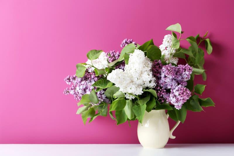 зацветая сирень цветков стоковое фото rf