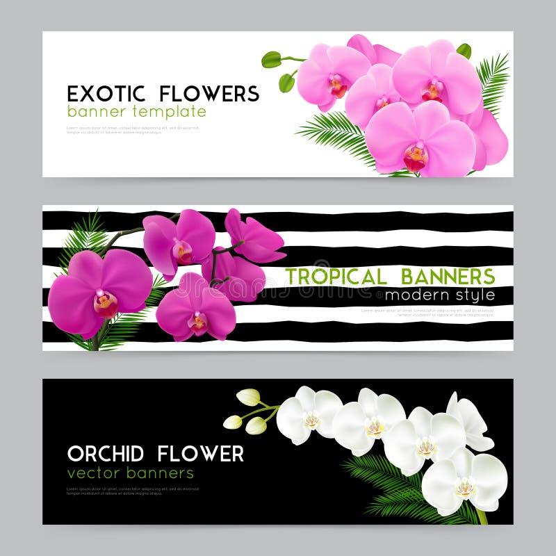 Зацветая установленные знамена орхидей реалистические иллюстрация вектора