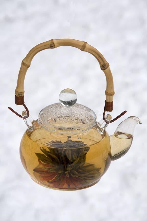 зацветая чай стоковые фотографии rf
