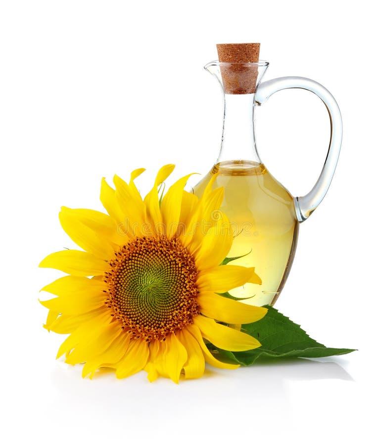 зацветите изолированная белизна солнцецвета масла кувшина стоковые фото
