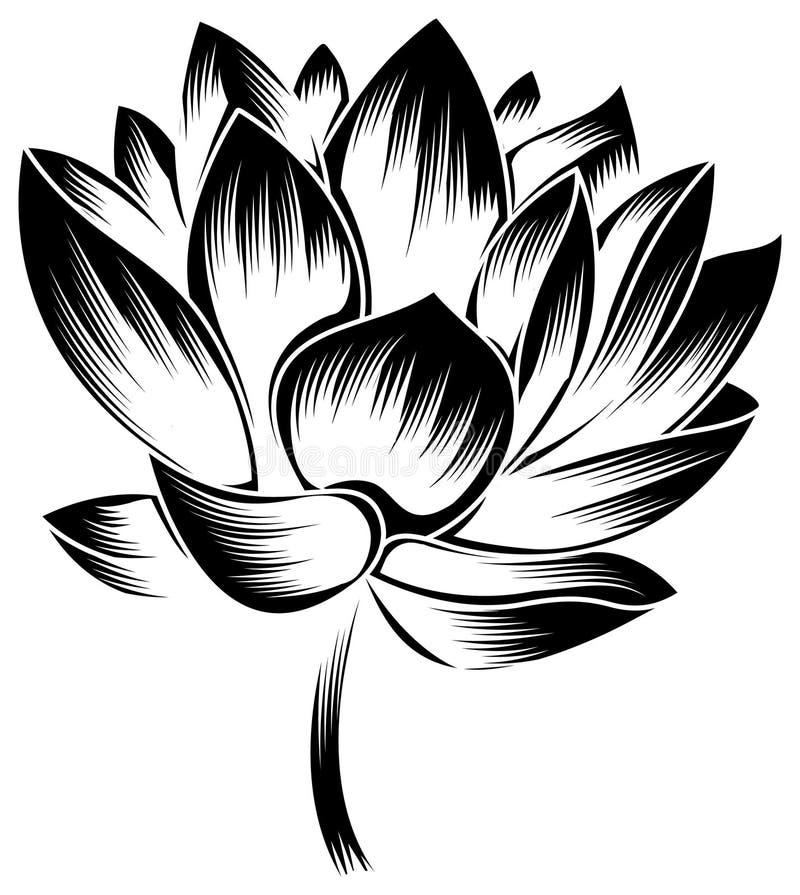 зацветите лотос бесплатная иллюстрация