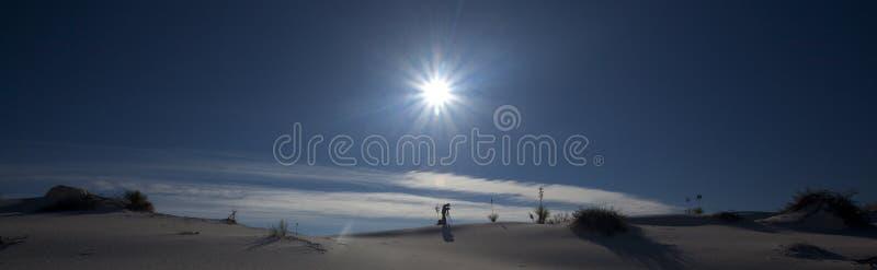 зашкурит белизну захода солнца стоковое изображение