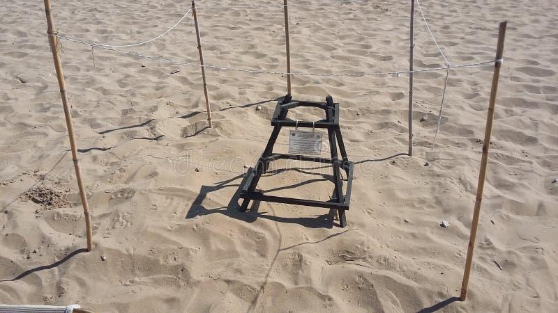 Защищенное гнездо черепахи стоковое изображение
