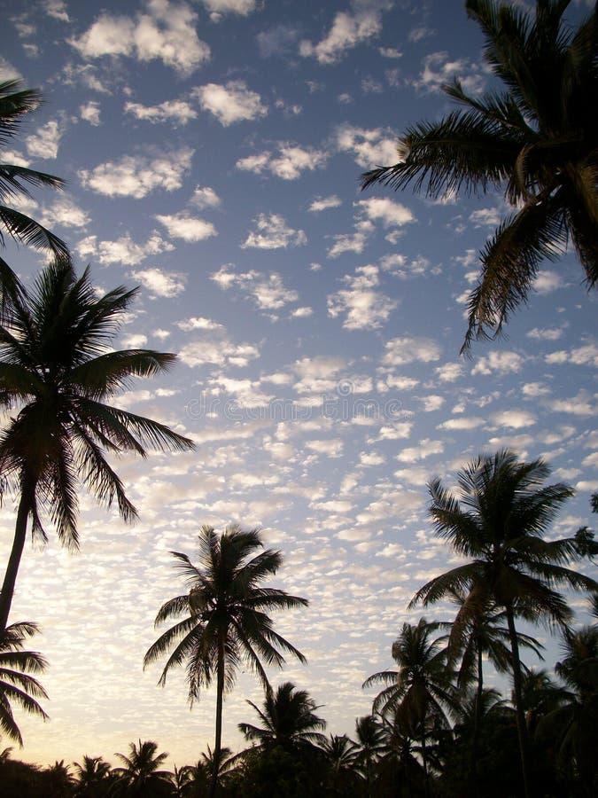 Залатанное небо стоковые фото
