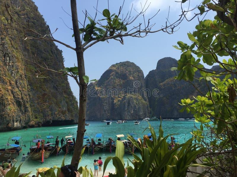 Залив Майя в Таиланде стоковые фото