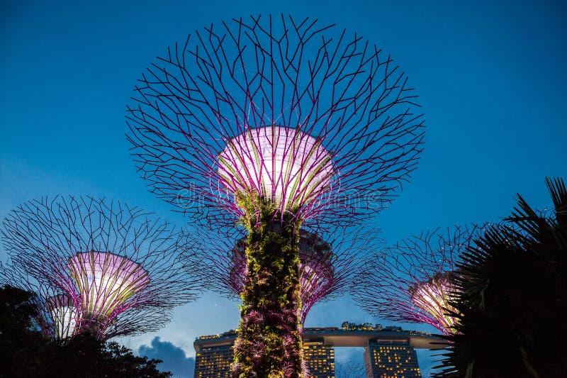 Залив садовничает Singapur стоковое фото rf