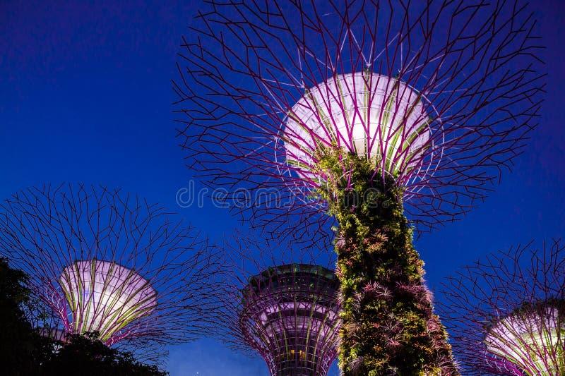 Залив садовничает Singapur стоковые изображения rf