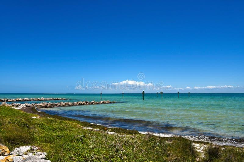 залив Тампа стоковая фотография rf