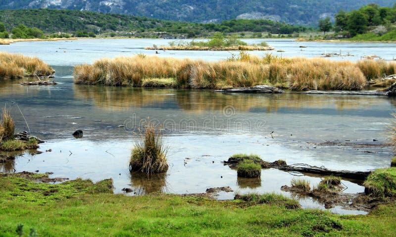 Залив Ensenada Zaratiegui, Огненная Земля, Аргентина стоковое изображение rf