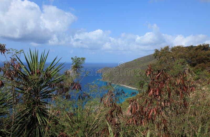 Залив St. Thomas США Виргинские острова виноделов стоковое фото