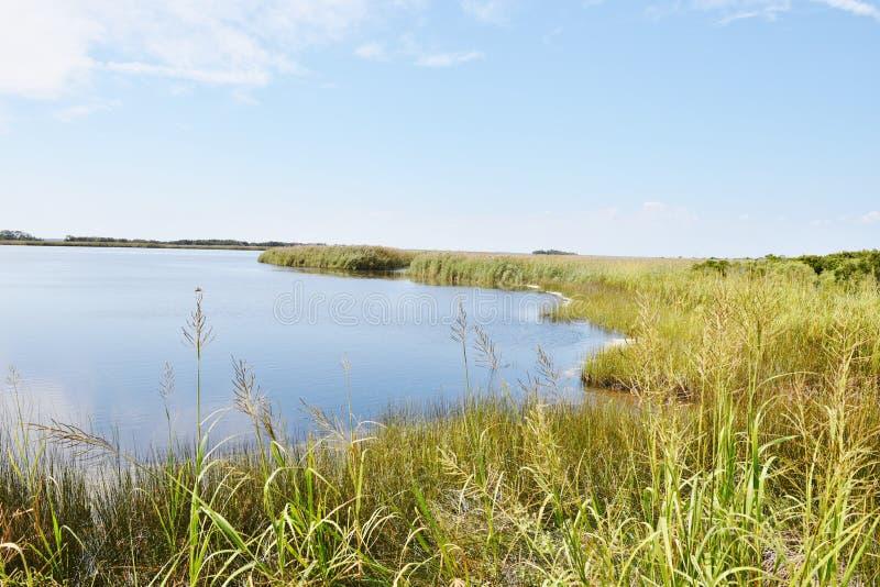 Заднее положение США Вирджинии пресноводного озера охраняемой природной территории залива стоковая фотография rf