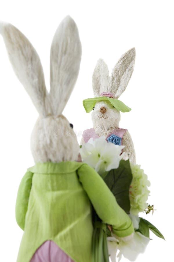Задний взгляд зайчика при букет цветка причаливая женскому кролику над белой предпосылкой стоковые фото