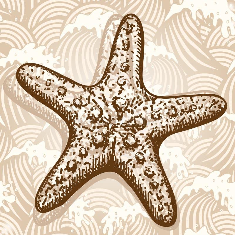 звезда моря иллюстрация вектора