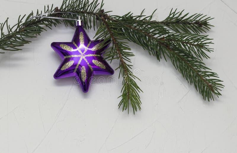 Звезда рождества на ветви зеленого цвета рождественской елки, на белой предпосылке стоковое фото rf