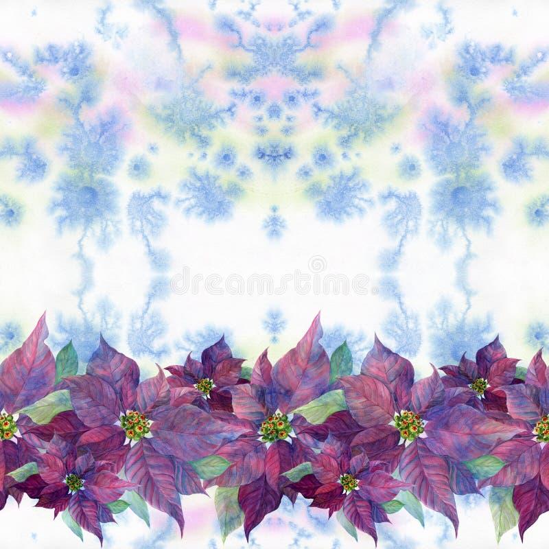 Звезда рождества, цветок рождества Poinsettia цветок ` s Нового Года, символ ` s Нового Года и праздников рождества Изображение иллюстрация штока