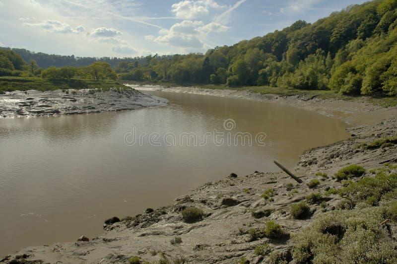 Звезда реки стоковые изображения rf