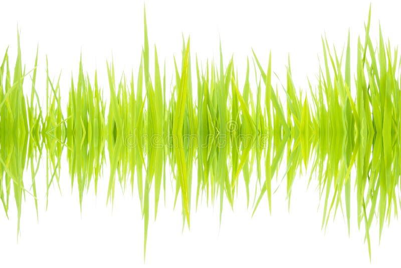 Звуковые войны 001 стоковые изображения