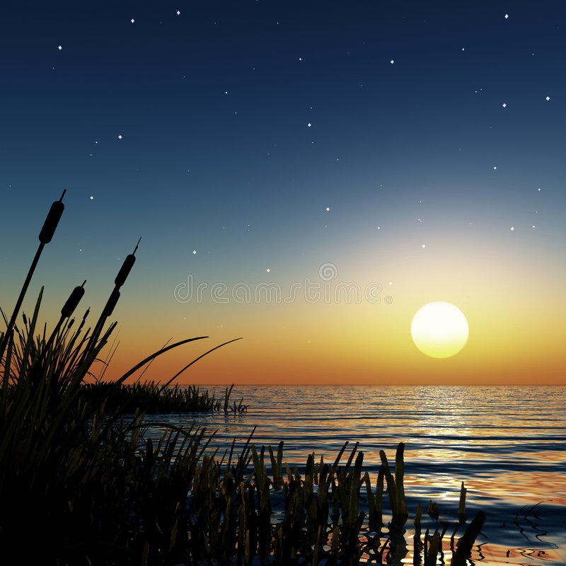 звёздный заход солнца стоковое фото rf