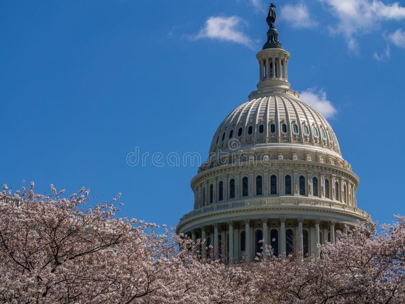 Здание капитолия Соединенных Штатов - Вашингтон d C , США стоковое фото rf