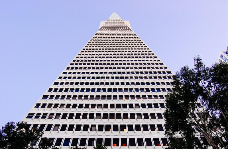 Здание пирамиды Transamerica стоковое фото rf