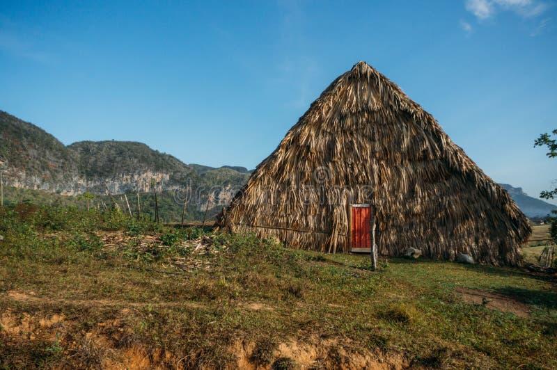 здание соломы в Кубе, долина Vinales, стоковое фото