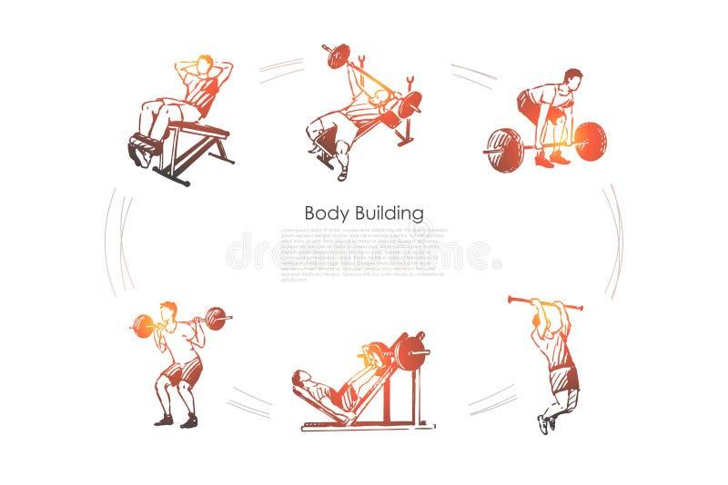Здание тела - человек делая тренировки со штангой в наборе концепции вектора спортзала иллюстрация штока