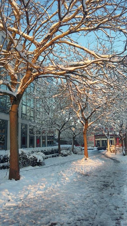здания идут снег вниз стоковые изображения rf