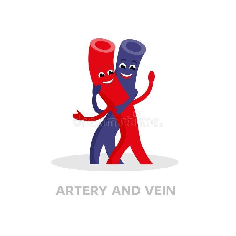 Здоровая вена и персонаж из мультфильма артерии изолированный на белой предпосылке Дизайн счастливого вектора значка вен плоский  бесплатная иллюстрация