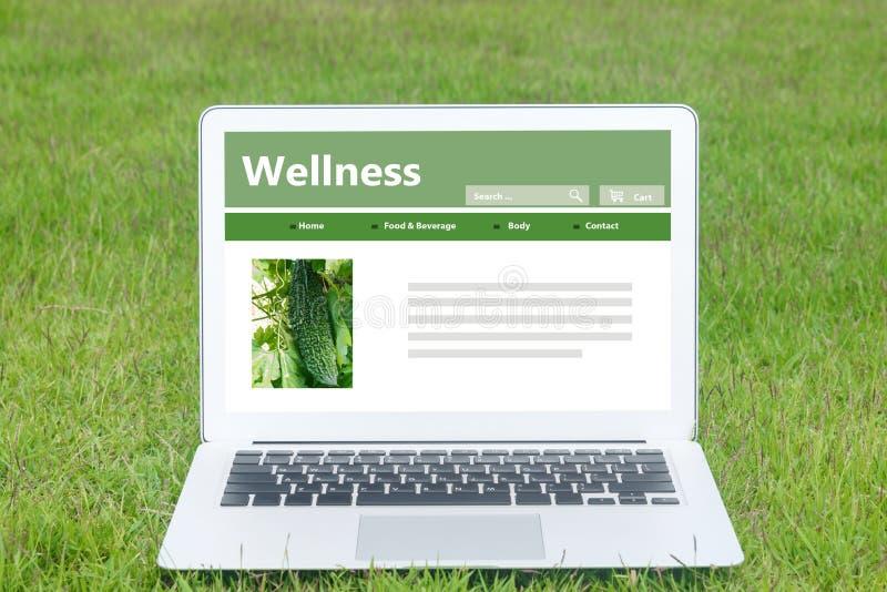 Здоровая еда через сеть стоковые изображения