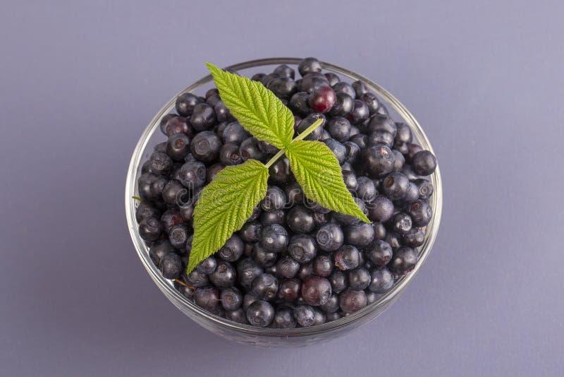Здоровая еда, еда, dieting и вегетарианская концепция - свежие, зрелые голубики в шаре, одичалой ягоде, крупном плане Свежая голу стоковое изображение