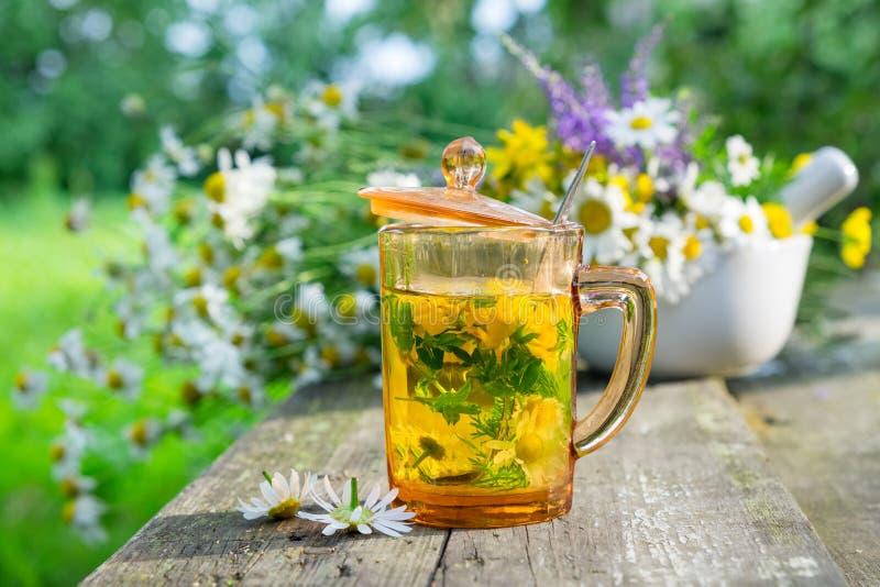 Здоровая чашка травяного чая, миномет целебных трав и трав маргаритки заживление стоковая фотография