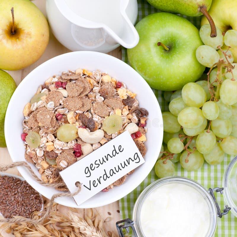 Здоровое пищеварение стоковая фотография