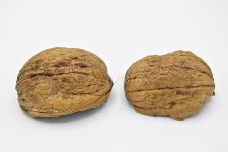 Здоровые и питательные бежевые коричневые зерна грецкого ореха Задавленные раковины грецкого ореха стоковые фото