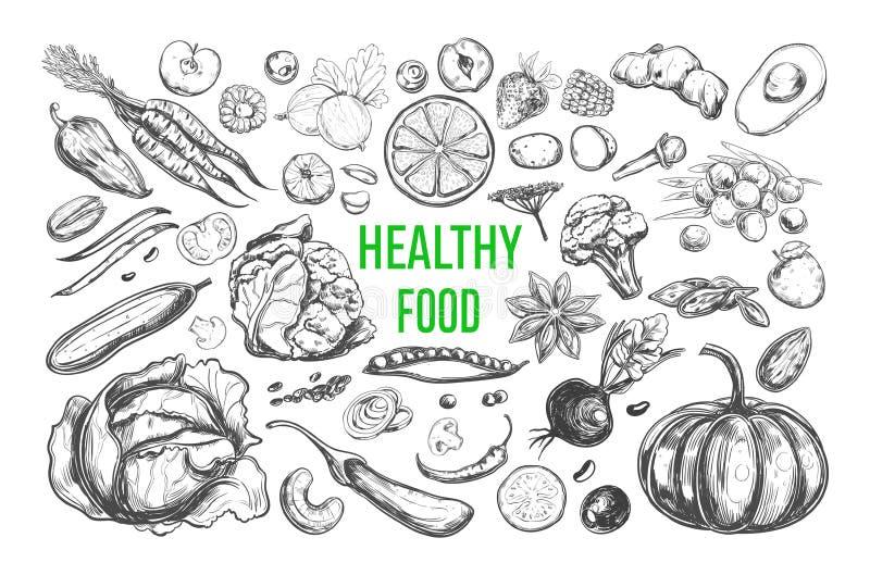 Здоровый вектор еды бесплатная иллюстрация