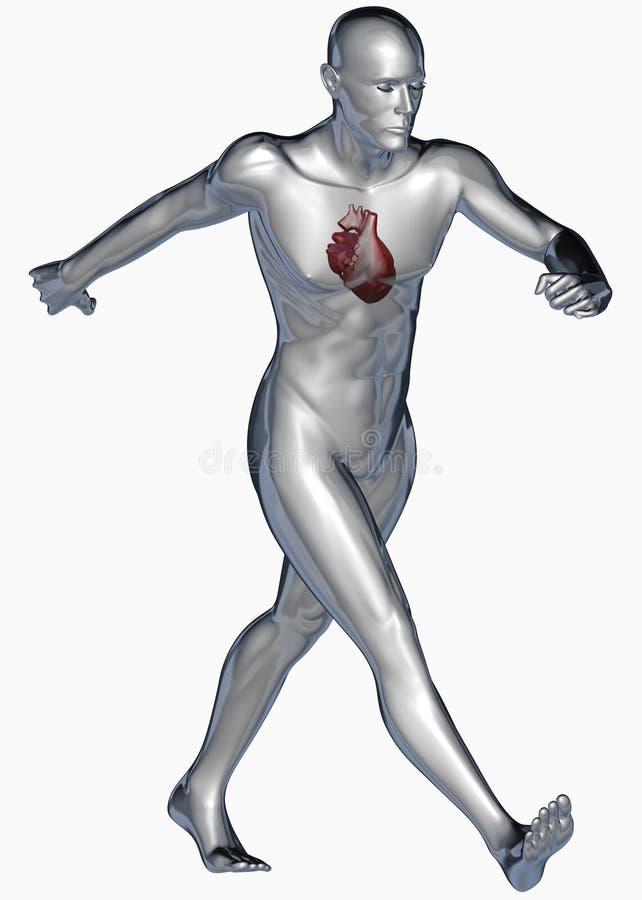 здоровый гулять человека сердца иллюстрация вектора