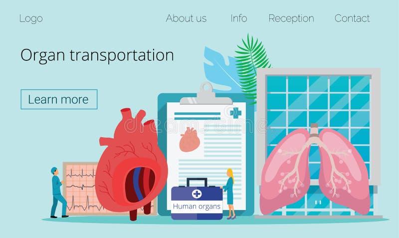 Здоровый даритель человеческого органа иллюстрация вектора