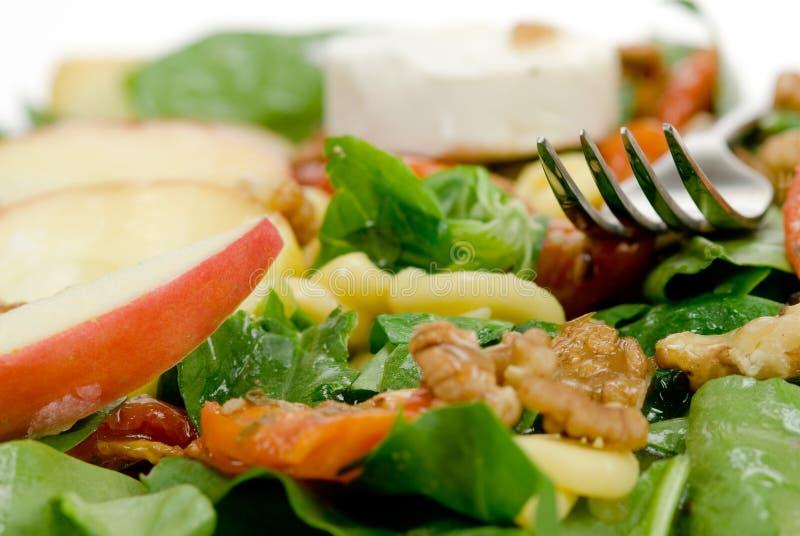 здоровый салат стоковое изображение